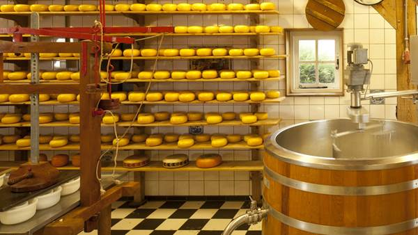 Cheesefactory experiencewaterland